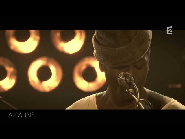 Alcaline, le Concert Keziah Jones et Ben lOncle Soul - Simply Beautiful