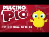 PULCINO PIO -