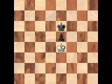 Шахматы для начинающих. Урок 7