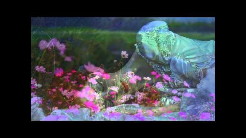 Richard Clayderman - Fur Elise (Ludwig van Beethoven's)