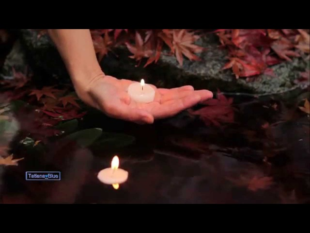 Spirit Of The Earth - music Stive Morgan