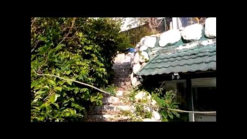 Naturland Eco Park 4, Aqua resort, заброшенный отель в Турции, Кемер.