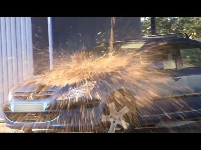 голубь обосрал машину пранк
