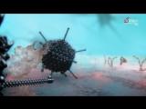 Внутренняя вселенная: Тайная жизнь клетки / Our Secret Universe: The Hidden Life of the Cell (2012)