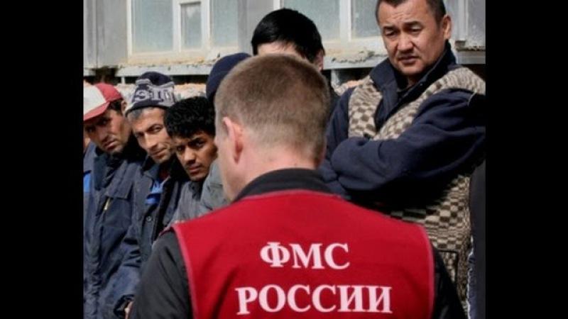 🇷🇺ФМС очищает мигрантов из России /ЧМ по футболу 2018/fms cleans migrants from russia.