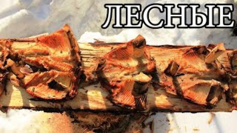 Дикая кухня ЖАРЕНАЯ РЫБА НА ДОСКЕ Деревянные гвозди Planked Fish