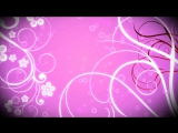 Delicate Pink  Video Loop