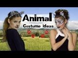 Easy Animal Costume MakeupHair  Leopard, Lion &amp Zebra