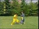Shaolin chain kung fu lianhuan quan combat methods