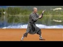 Shaolin kung fu luohan 18 hands