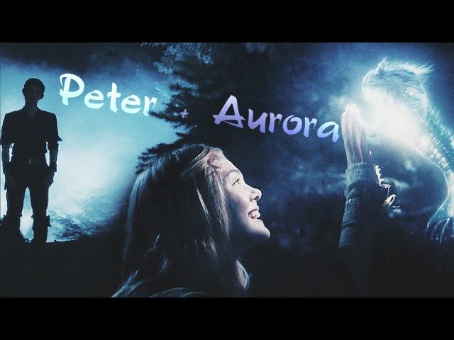 Peter pan aurora {for ttuday}