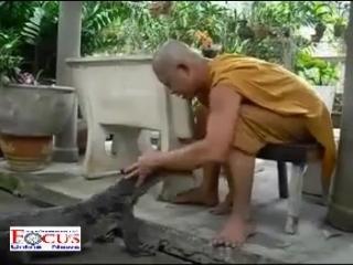 Монах и варан