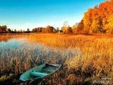 Вот и осень. Владимир Асмолов.