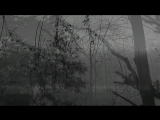 Vinterriket - Grauweiss (2011)