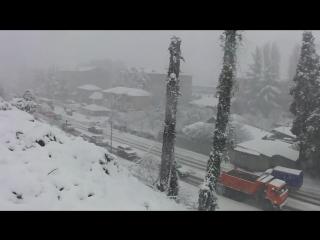 Снег в Сочи. 1 февраля 2012