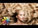Как быстро отрастить волосы Все буде добре Выпуск 586 21 04 15