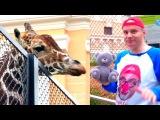 Дима в ЗООПАРКЕ.  ЖИРАФ. Видео для детей про животных. Серия 5.