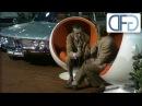 IAA 1969 - Porsche 914 | Opel GT | Audi 100 Coupé S | Fiat 128 | Renault 16 | Ford 26M