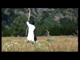Wudang Eight Immortals Staff Form