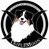Питомник австралийских овчарок TRIPLEMOON