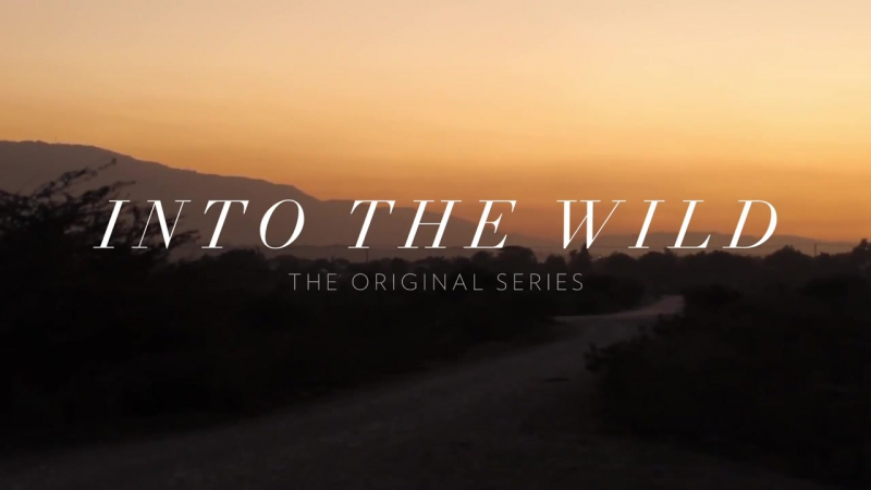 THIRTY SECONDS TO MARS - INTO THE WILD OFFICIAL TRAILER