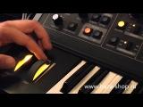 Синтезатор Moog Little Phatty Stage II. Подробный обзор