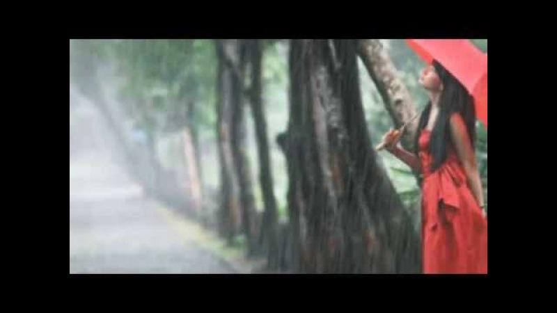 Павло Дворський - Нехай тобі розкаже дощ