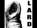 Lard The Power of Lard