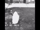 ghostbusting training