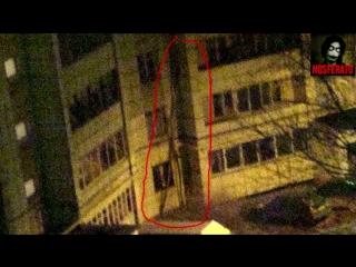 Истории на ночь station922.mkv (Палочник, Буратино)