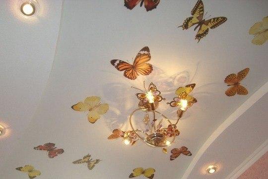 фото наклейка бабочки на потолке
