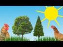 ЗВУКИ ЖИВОТНЫХ. Как говорят животные. Развивающий мультфильм для самых маленьких