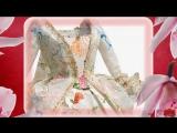Бумажная мода Изабель де Боршграв