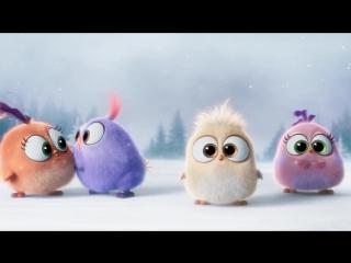 Angry Birds в кино (The Angry Birds Movie) (2016) промо-трейлер /Новый Год/
