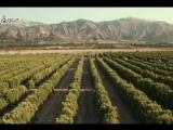 Avicii ft Aloe Blacc - Wake Me Up - Subtitles English - SD &amp HQ