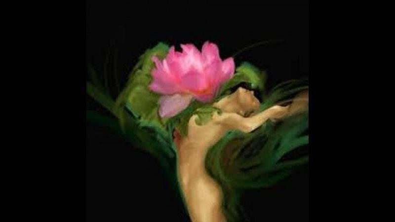 Медитация: Цветок души. Глубинное вхождение в пространство души. Взаимодействие с душой.