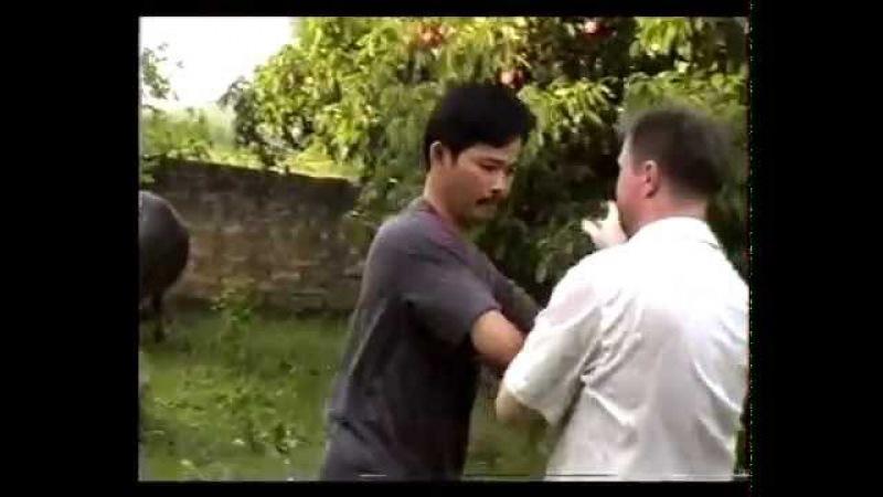 Dưỡng Sinh Nhu Quyền (Nguyễn Đức Dũng)