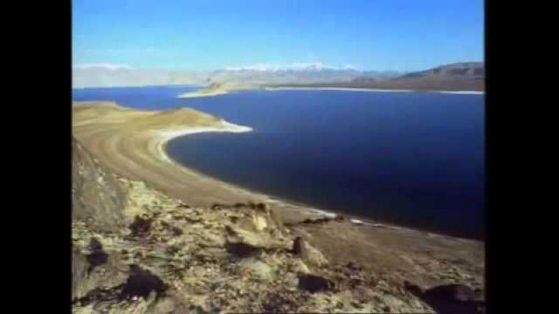 В горах Крыма. Мир дикой природы.