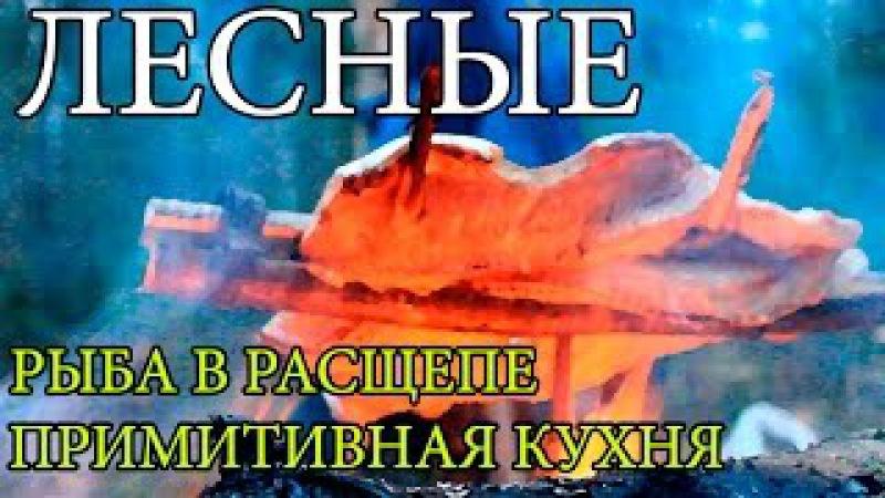 Дикая кухня - ЖАРЕНАЯ ЩУКА НА ОГНЕ В РАСЩЕПЕ