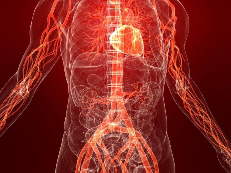 hsjet5TKkm0 - Изменения в организме без никотина