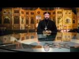 Святая Правда - Пророк Илия.