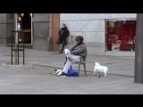 Криштиану Роналду Бомж пранк | Cristiano Ronaldo Homeless Prank [Рифмы и Панчи]