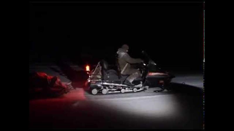 Сибирская лайка | Избранное из фильма Счастливые люди