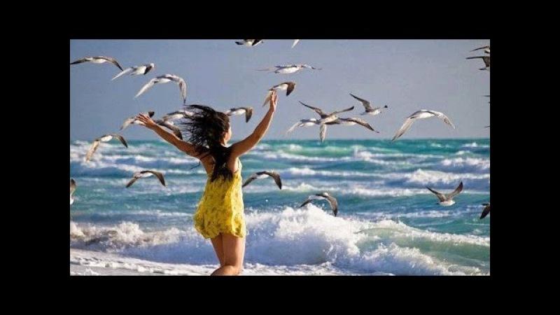 Chris Spheeris / Крис Сфирис ~ Море и душа
