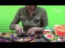 Как покупать георгины Подготовка георгинов к посадке. Сайт Садовый мир