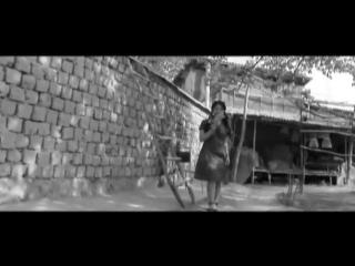 Bojalar - Qora choy _ Божалар - Кора чой