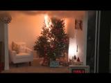 Новогодняя ёлка загорается за несколько секунд
