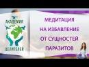 Медитация на избавление от сущностей паразитов Николай Пейчев Академия Целителей