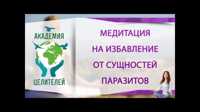 Медитация на избавление от сущностей паразитов [Николай Пейчев, Академия Целителей]