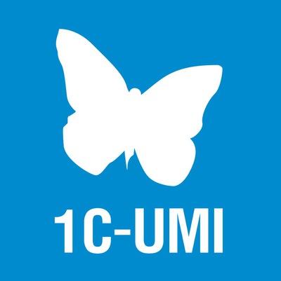 Картинки по запросу 1C-UMI